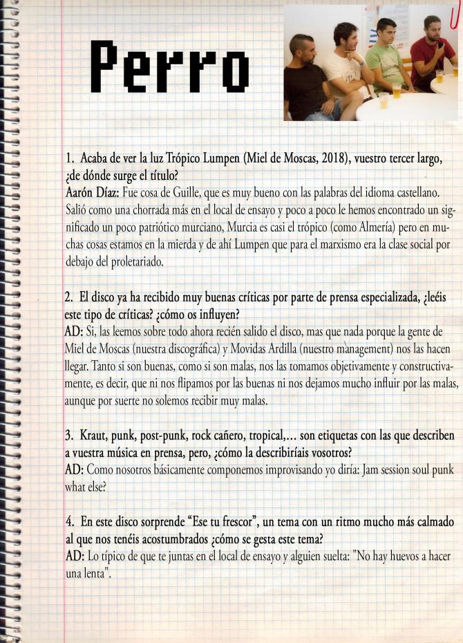 cuestionario_Perro_1